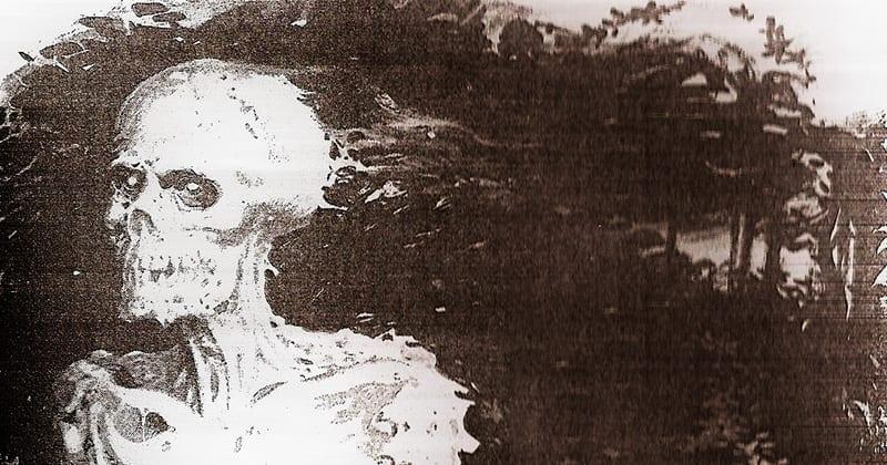El cuerpo seco